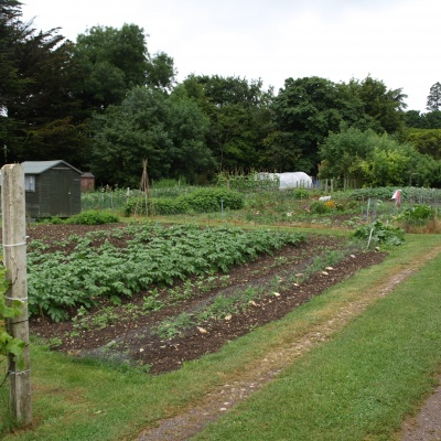Allotments 1 During Open Gardens 12th June 2016
