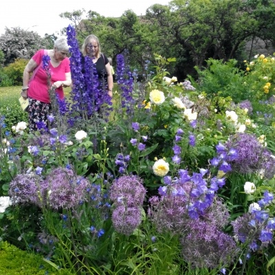 33 Open Gardens 12th June 2016 Heale Wold