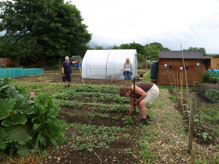 Allotments 5 During Open Gardens 12th June 2016
