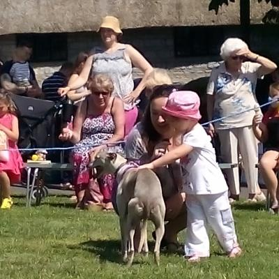 Church Fete Dog Show1