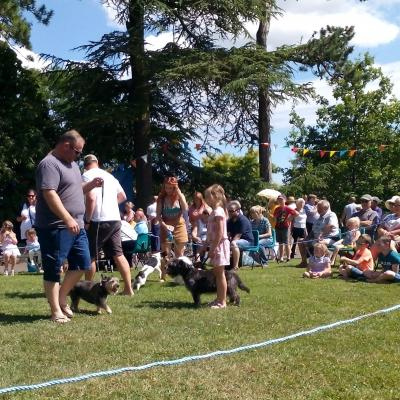Church Fete Dog Show3