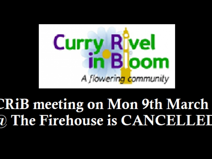 CRiB March Meeting Cancelled