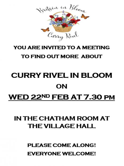 CRiB Meeting Flyer
