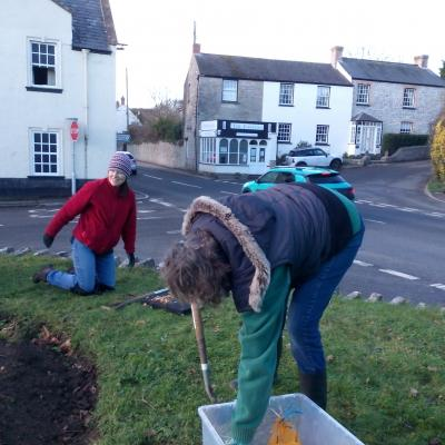 Crib planting spring bulbs at Twinning Tree2