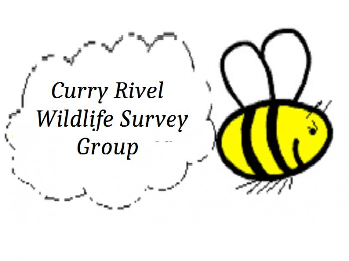 Curry Rivel Wildlife Survey Group
