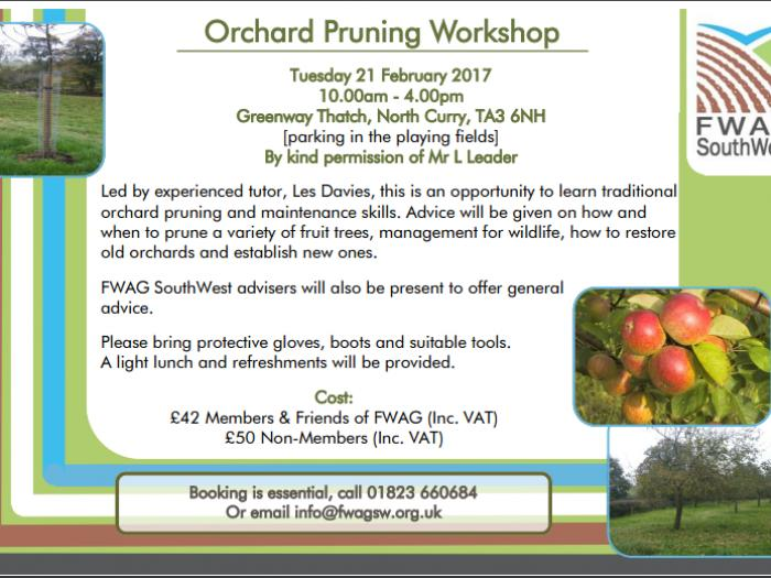 FWAG Orchard Pruning Video 21st Feb