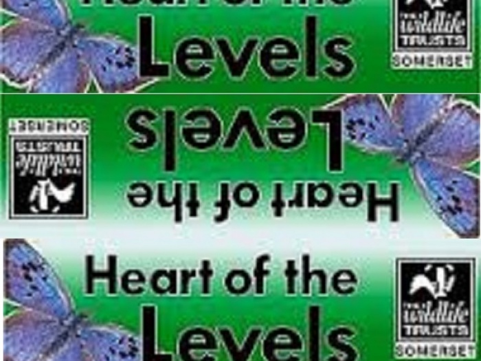 Heart of the Levels logo