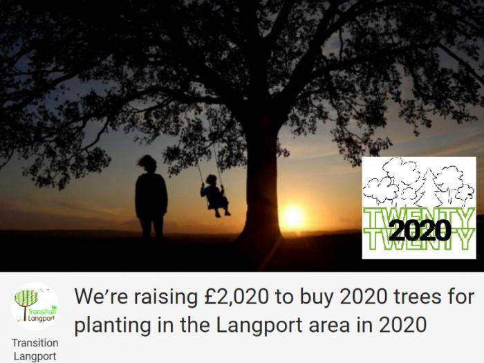 Image: 2020 Trees for Langport
