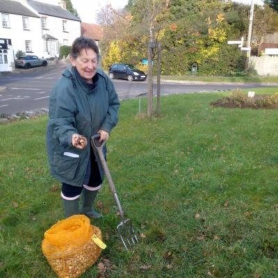 Madeleine planting spring bulbs around the Twinning Tree 1