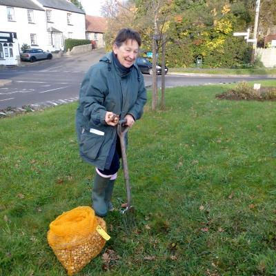 Madeleine planting spring bulbs around the Twinning Tree 3