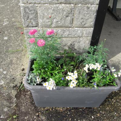 Parsonage Place Planter before theft
