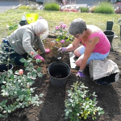 Planting at Madelaines 3rd June 2019 3