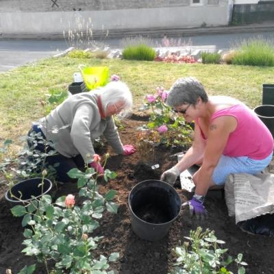 Planting at Madelaines 3rd June 2019 5