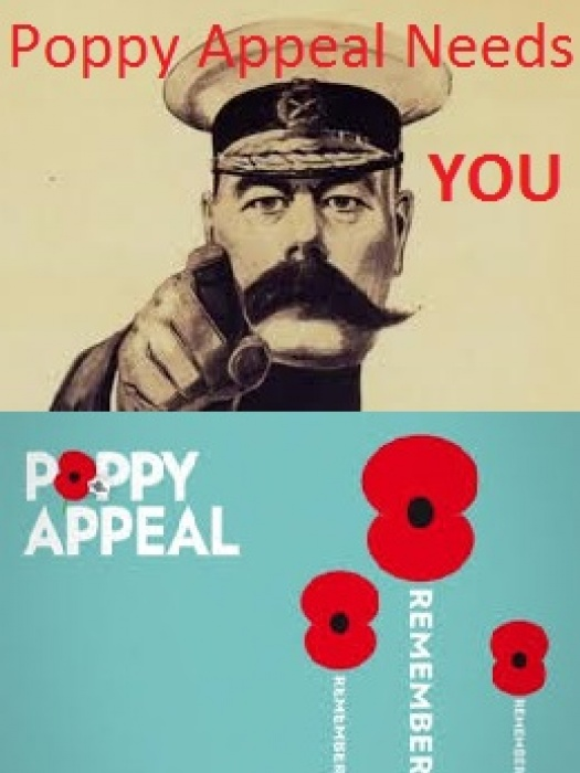 Poppy Appeal Need You