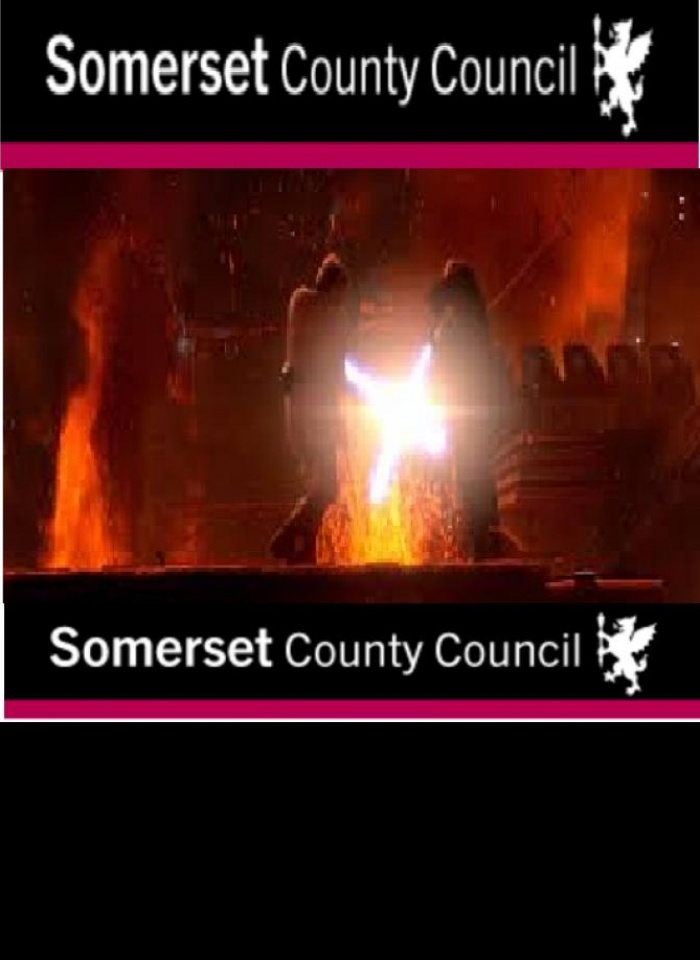 Somerset County Council Logo Light Sabre