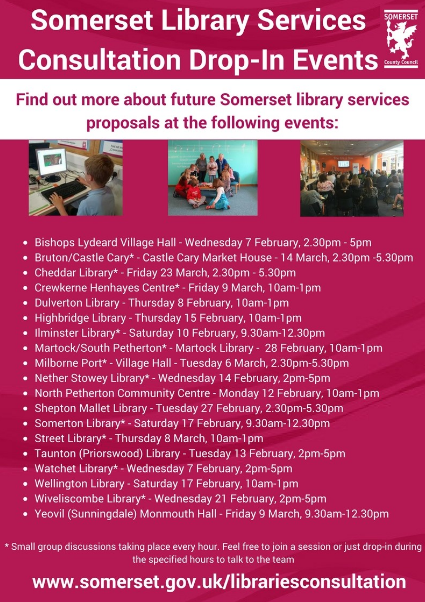 Somerset Library Consultation2