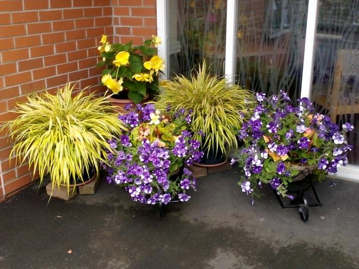 Village Hall Flowers3