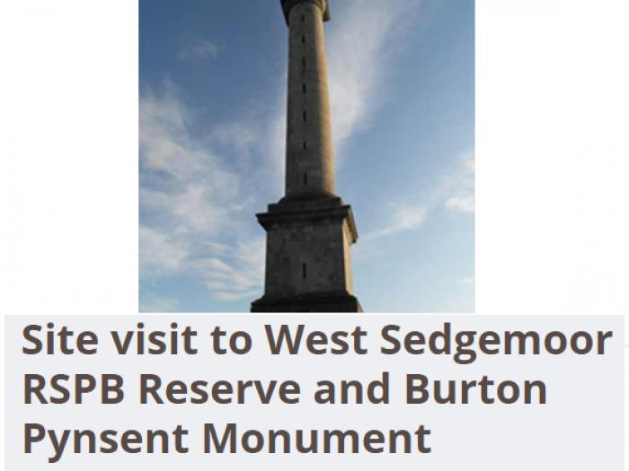 Visit to Monument and RSPB West Sedgemoor